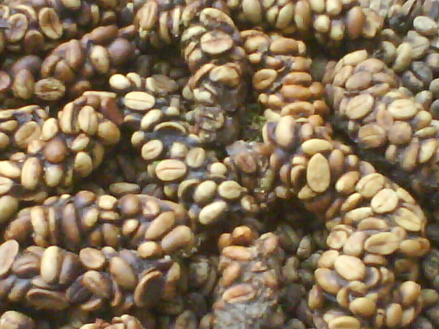stiati_ca_raro_cafea